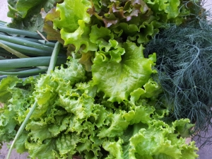 Should You Be Concerned About Nitrates in Your Food