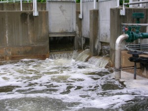 Are Water Treatment Plants the Source of Emerging Contaminants